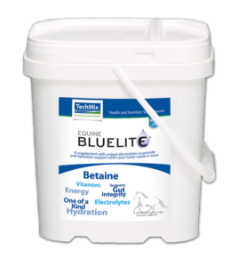 Equine BlueLite Powder